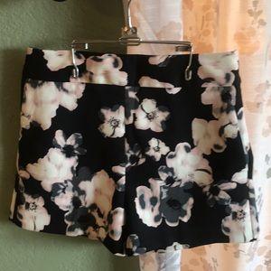 "Express size 4 dress shorts w/a 2 1/2"" inseam NWT"